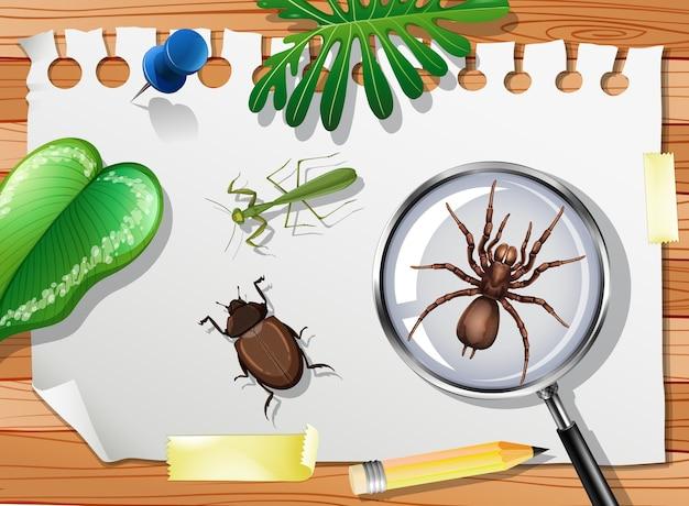 Крупным планом много разных насекомых на столе Бесплатные векторы