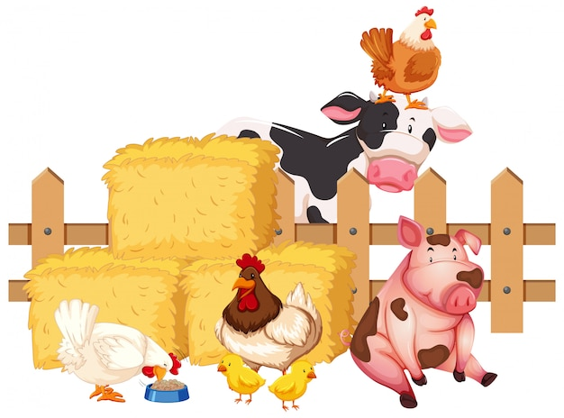 Many farm animals on white background Free Vector