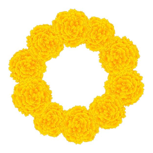 Marigold flower Premium Vector