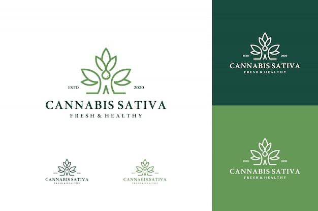 マリファナ健康医療大麻ロゴセット Premiumベクター