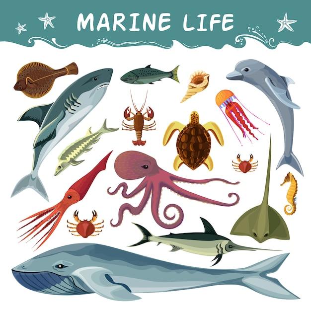 Marine inhabitants decorative icons set Free Vector