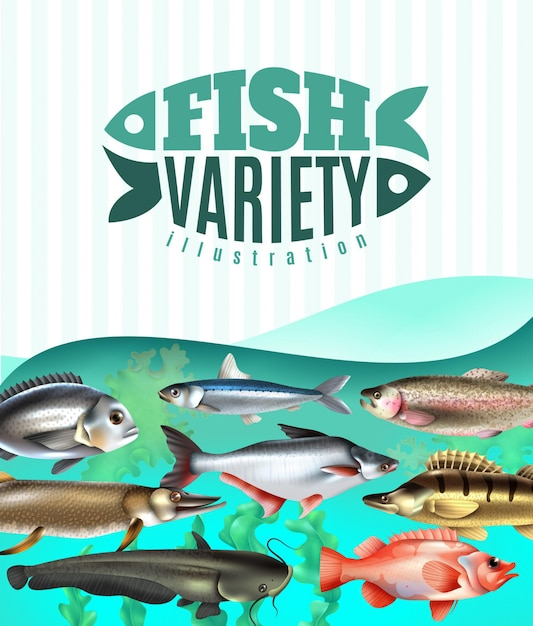 Marine and river fish variety underwater with sea weeds on turquoise Free Vector
