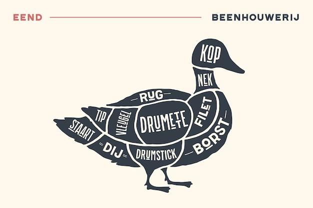ミートカット。肉屋図とスキーム-アヒル。ヴィンテージ手描きのタイポグラフィのオランダ語のテキスト。 Premiumベクター
