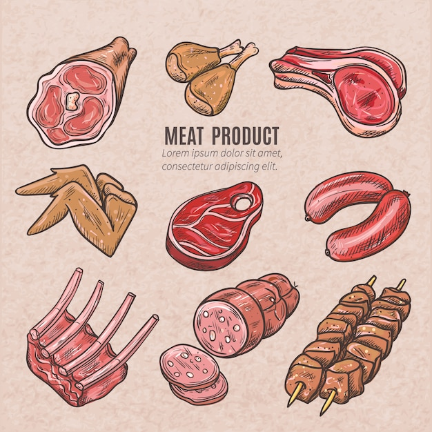 Meat products sketches set in vintage style with skewers pork ribs chicken wings steaks Free Vector