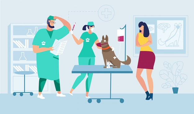 Medical help for injured pet Premium Vector