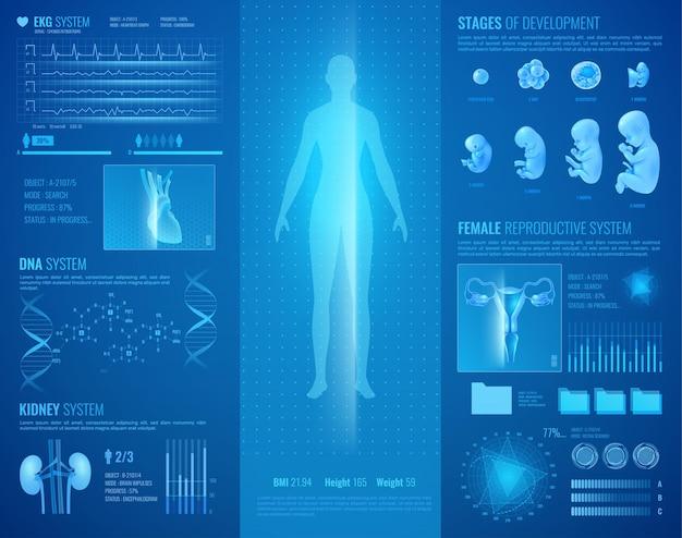 Реалистичный медицинский интерфейс с системой сердца и почек Бесплатные векторы