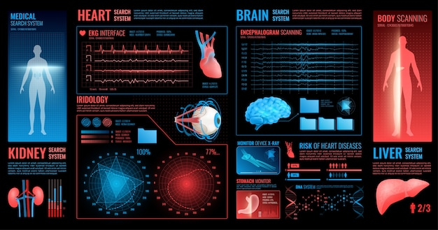 Medical interface with organs information Free Vector