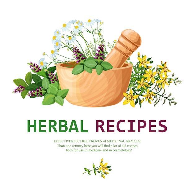 Medicinal herbs in mortar illustration Free Vector