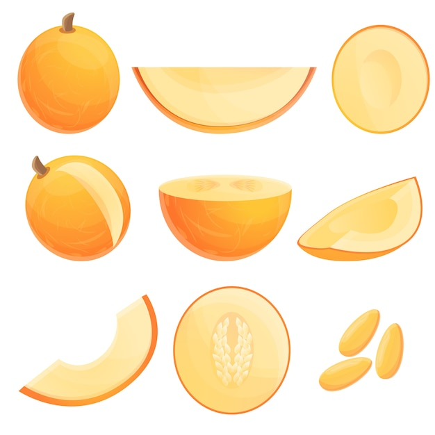 Melon set, cartoon style Premium Vector