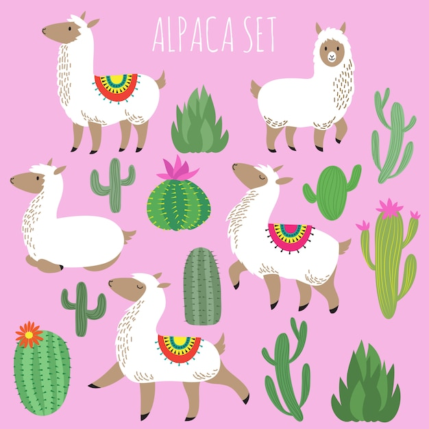 Mexican white alpaca lamas and desert plants vector set Premium Vector