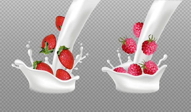 Milk splash with berry fruits Premium Vector