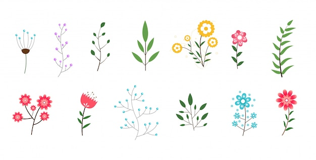 Минимальная коллекция цветов и листьев Бесплатные векторы