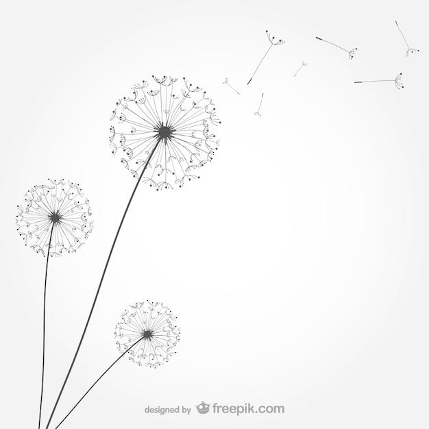 Minimalist dandelion Free Vector