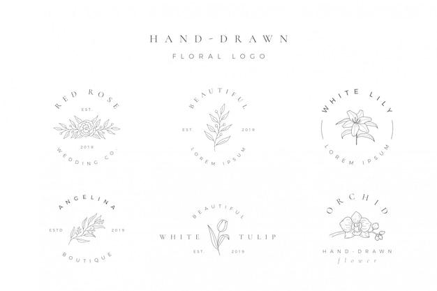Минималистский ручной обращается цветочный логотип Premium векторы