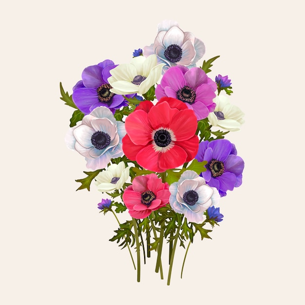 Mixed anemone flowers Free Vector