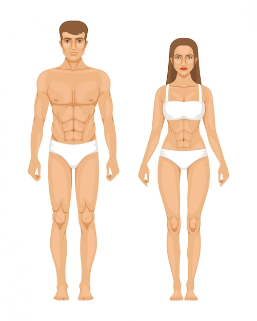 Model of sporty man and woman standing front view Premium Vector