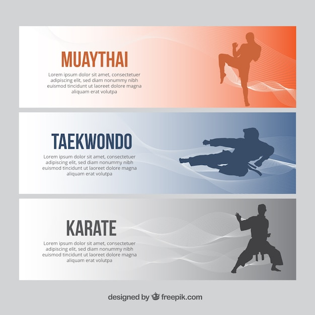 Karate Vectors Photos And Psd Files Free Download