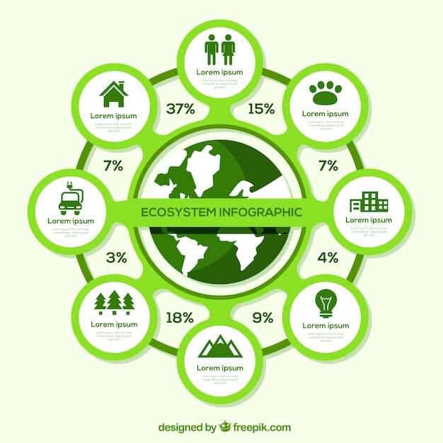 Modern ecosystem infographic with flat design Free Vector