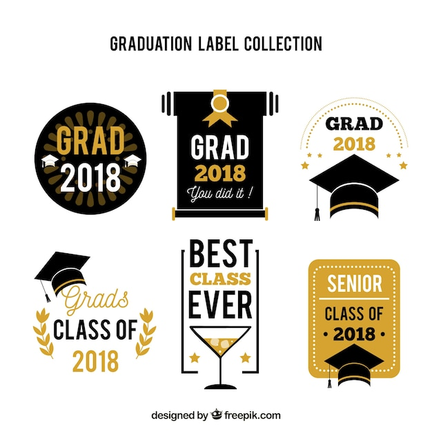 Modern graduation badge collection Free Vector