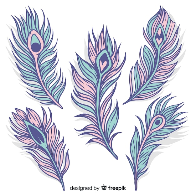 Modern hand drawn peacock feather collection Free Vector