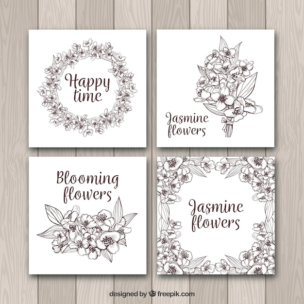 Modern jasmine cards with sketchy style