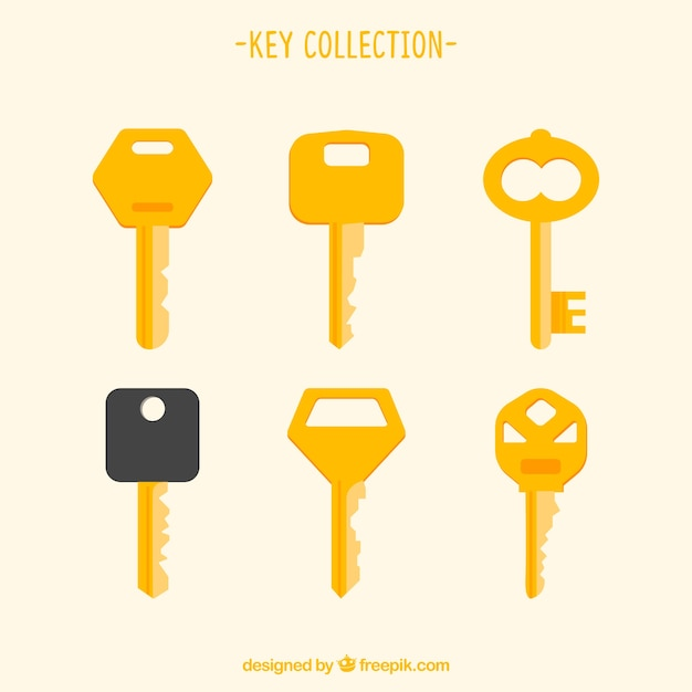 modern key collection vector free download