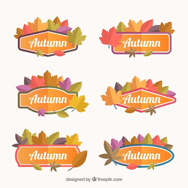 Modern pack of autumn badges