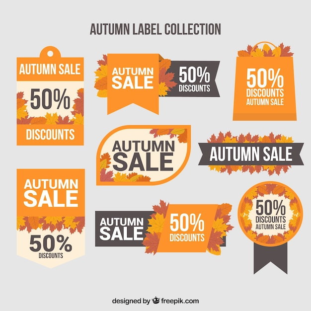 Modern set of autumn label with flat design