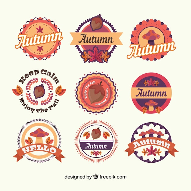 Modern set of lovely autumn badges