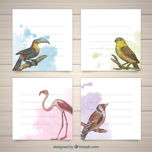 鳥の水彩カードの現代的なセット 無料ベクター