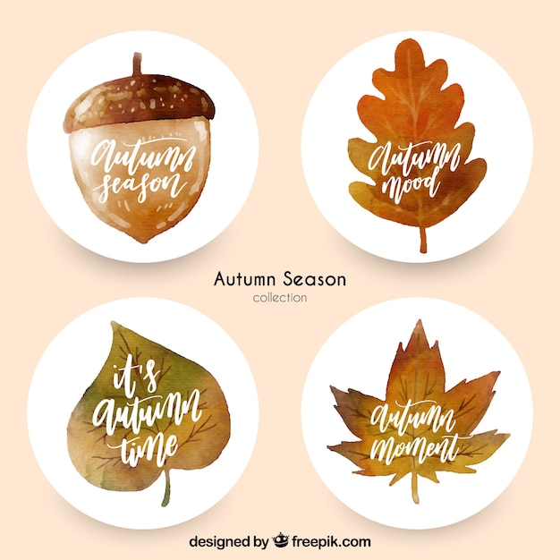 Modern set of watercolor autumn labels Free Vector