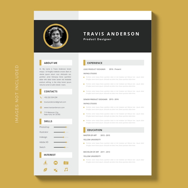 Modern Simple Template For Curriculum Elegant Resume Template Free Vector