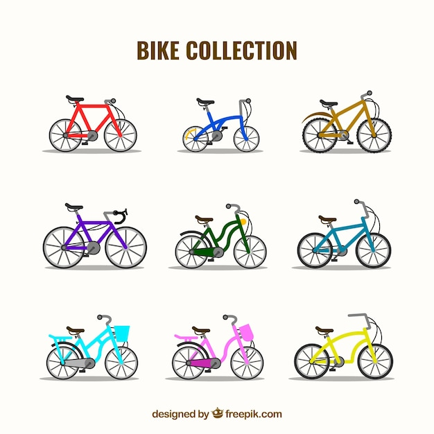 Modern variety of bikes with flat design