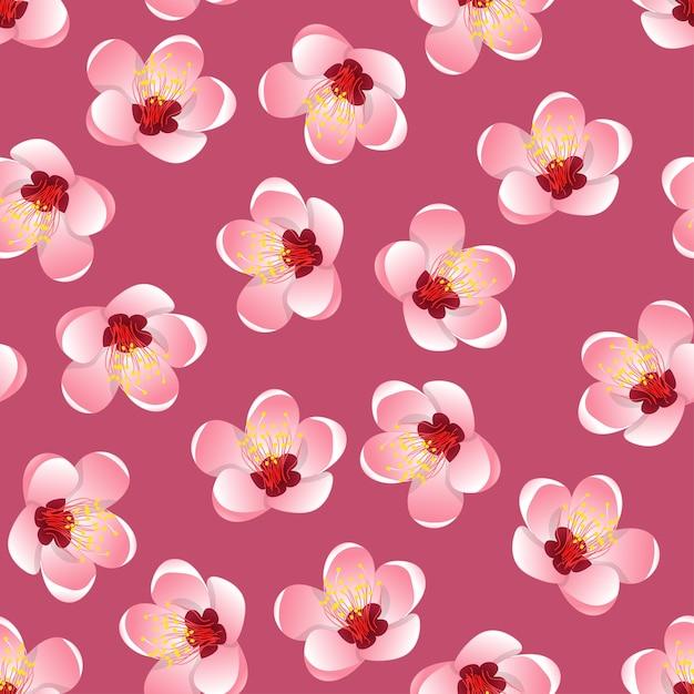 Momo peach flower blossom on pink background Premium Vector
