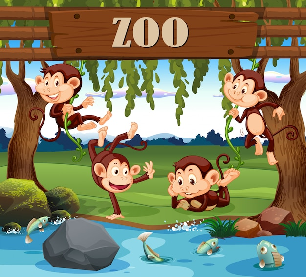 A monkey family in the zoo Premium Vector