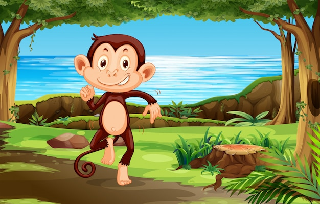 Monkey in the forest Premium Vector