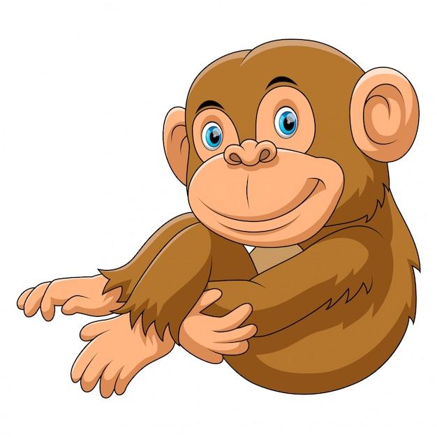 Monkey sitting cartoon Premium Vector