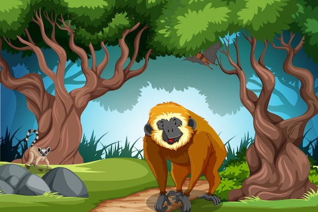 Monkey in the wild forest Free Vector