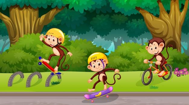 Monkeys playing in park scene Free Vector