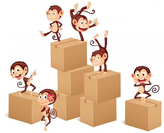 Monkeys playing with boxes Free Vector