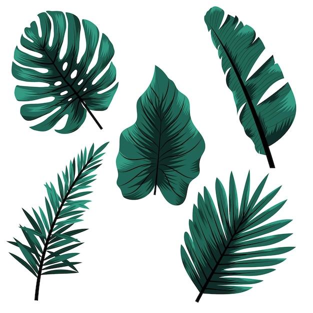 Монохромный стиль тропических листьев Бесплатные векторы