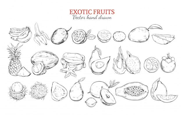 Монохромная коллекция экзотических и тропических фруктов Бесплатные векторы