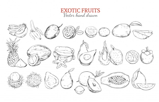Monochrome exotic and tropical fruits collection Free Vector