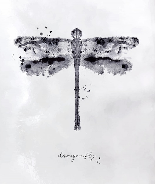 Monotype dragonfly drawing with black and white on paper background Premium Vector