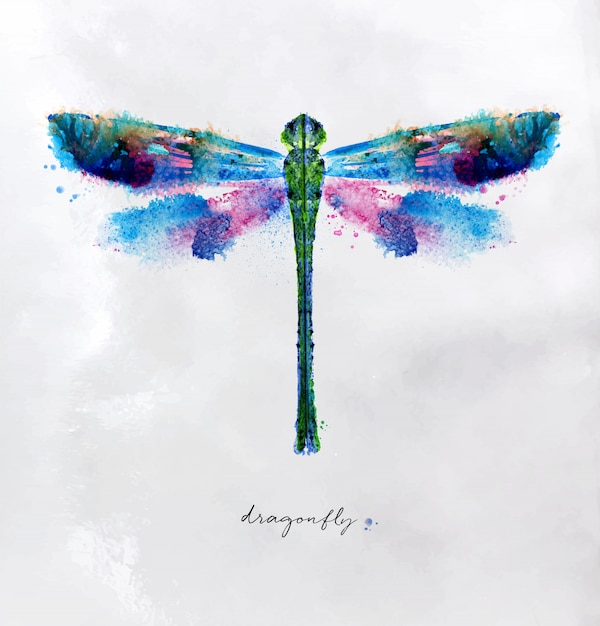 Monotype vivid colorful dragonfly drawing with different colors on paper background Premium Vector