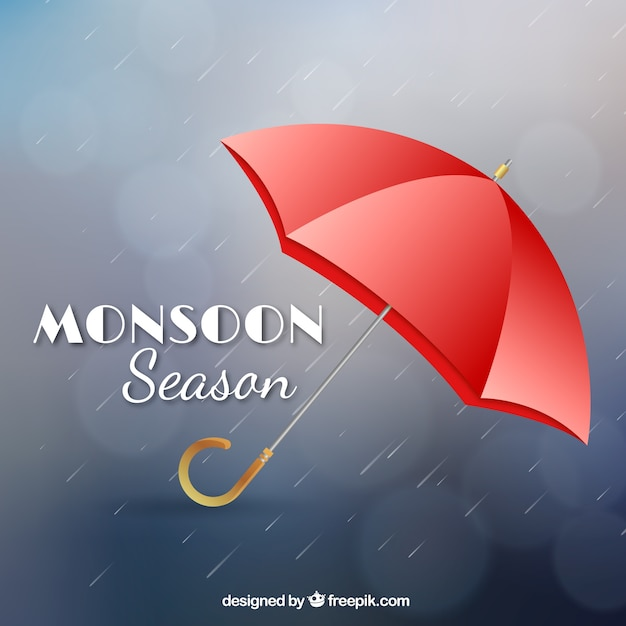 Monsoon season composition with realistic design Free Vector