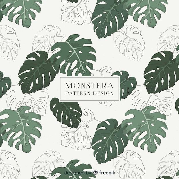 Monstera leaves pattern Free Vector
