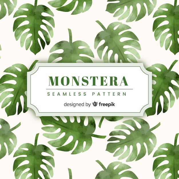 Monstera leaves Free Vector