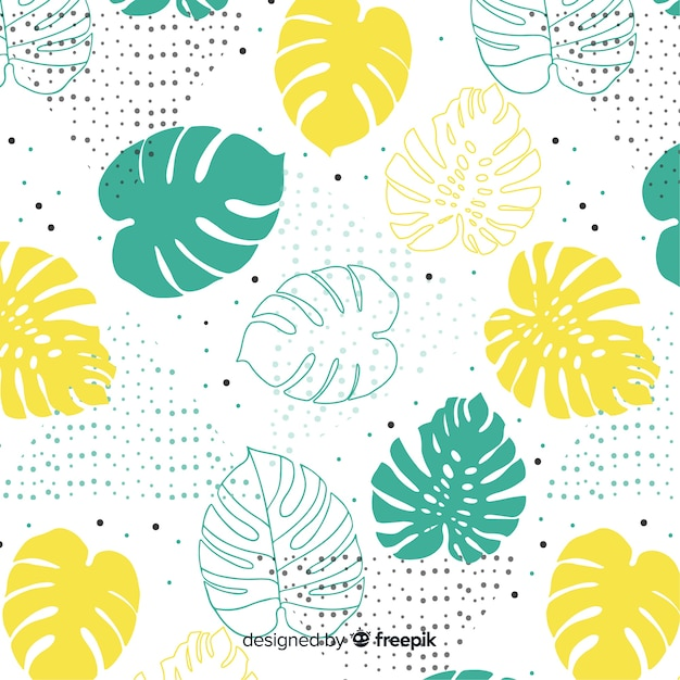 Monstera leaves Free Vector