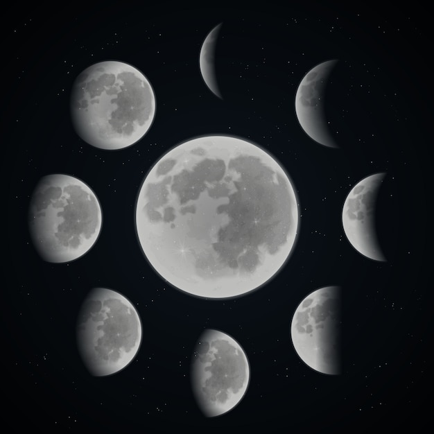Moon phase set Free Vector